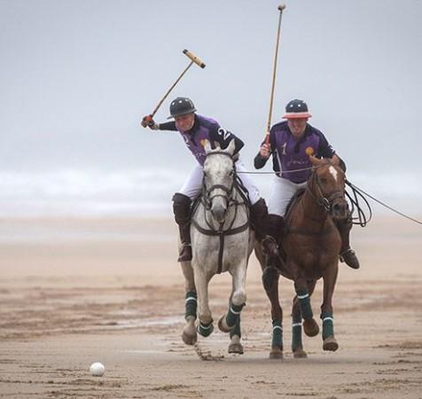 Polo & Sport