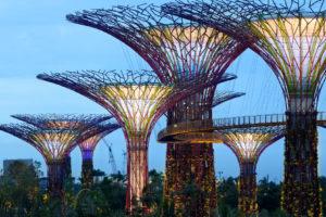 120607020215-supertree-singapore-night-horizontal-large-gallery